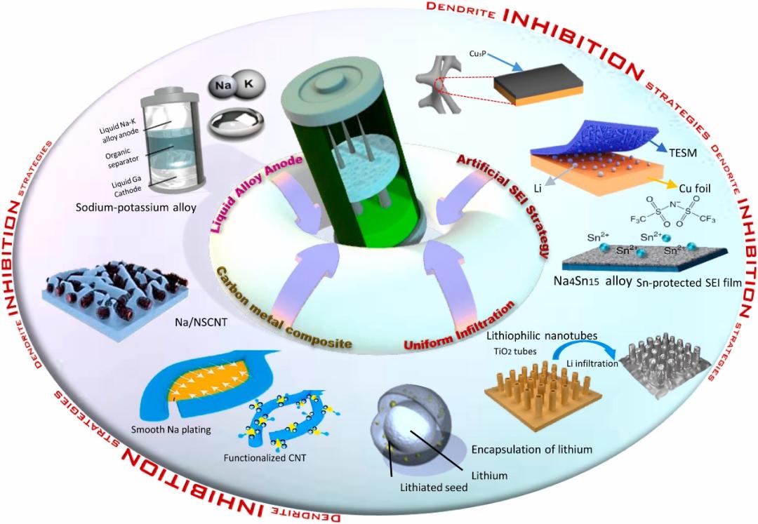 西南大学徐茂文教授Nano Energy综述:金属电池中的枝晶应对策略