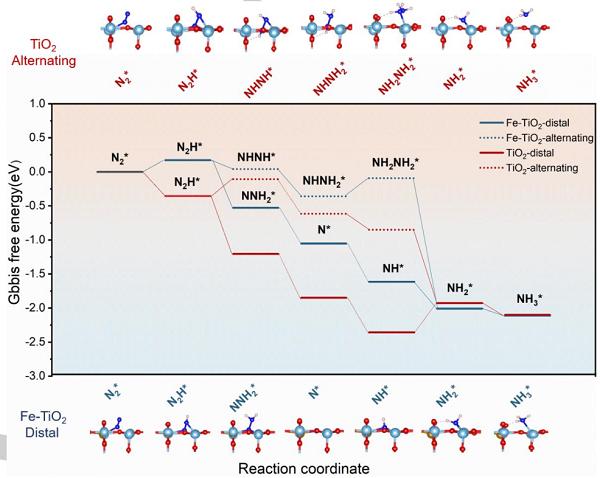 熊宇杰光催化固氮新成果:交替缔合还是远端缔合?
