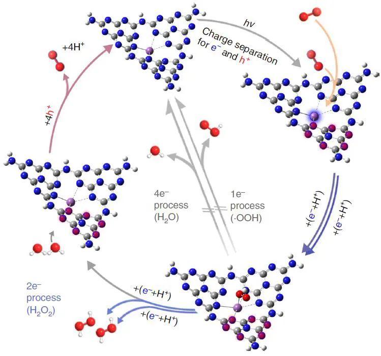 苏陈良&刘彬Nature Catalysis:光催化产H2O2新进展,单原子Sb催化剂大显神威!