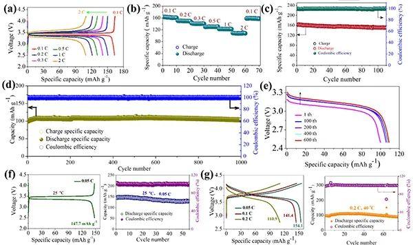 Angew:适用于全固态锂电池的双离子-电子转移界面层