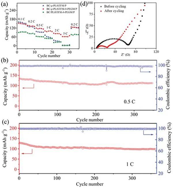 吴丁财教授AM:超薄、坚韧的聚合物刷电解质