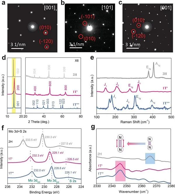 Adv. Mater.:亚稳态MoS2的本征电子局域化促进电催化氮还原制氨