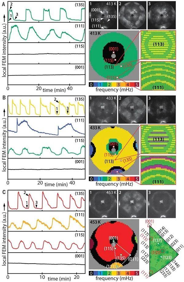 Science:高空间(~2nm)和时间分辨率(~2ms)的原位场电子显微镜,实现对活性位点的直接成像