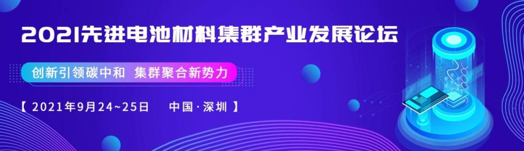 郑洪河&黄云辉Adv. Mater.:高模量SEI和CEI助力高性能硅负极