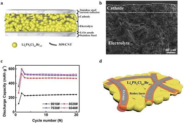 AEM:锂硫银锗矿作为固体电解质和正极前驱体构建高性能固态电池