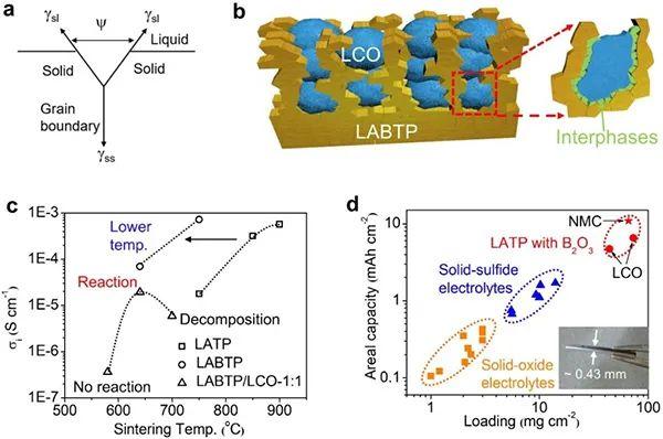 EES:低温烧结的全固态氧化物正极