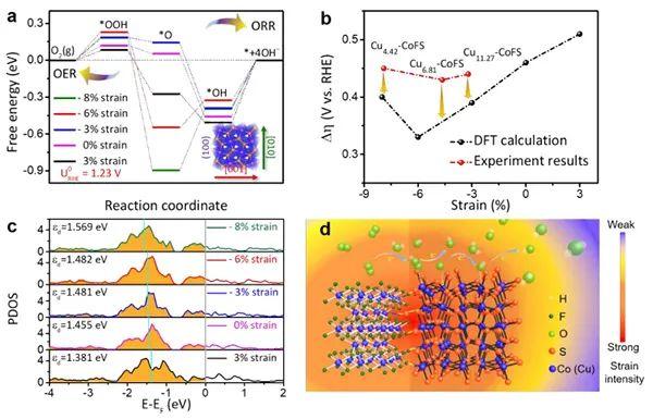 EES: 锌空气电池双功能电催化剂的掺杂应变控制