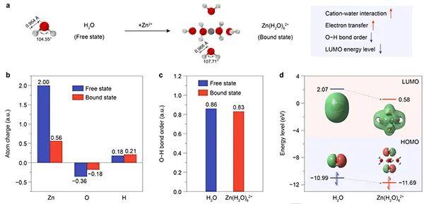 Angew:阴离子型无水Zn2+溶剂化结构抑制锌枝晶和析氢反应