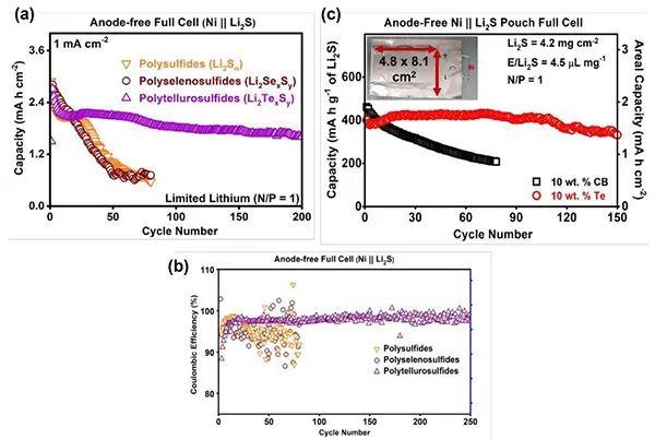 硫族元素原位取代的多硫化物用于提升锂硫电池性能